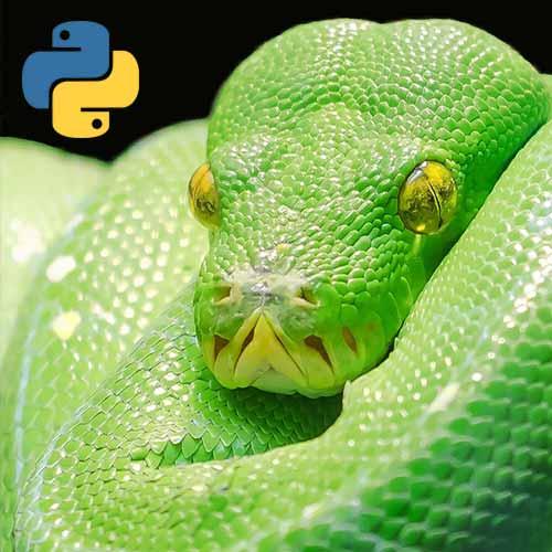 Онлайн курс Автоматизация и разработка инструментов на Python в MAYA